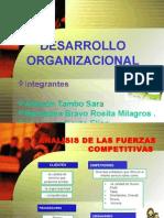 DESARROLLO  ORGANIZACIONAL   exposicion.pptx