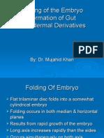 Folding of an Embryo