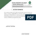 Formato Acta de Entrega