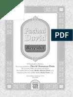 Pachad David Bereshit