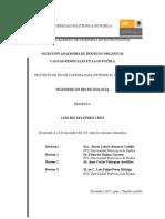 Universidad Politécnica de Puebla Reporte Final