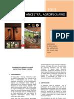 Diagnostico Agropecuario Ancestral Qñ