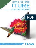 AV TV Flow Booklet 2015 March FAW