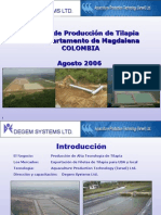 Proyectos de Tilapia