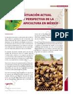 Apicultura Actual en Mexico