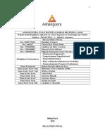 Relatório Final Prointer I
