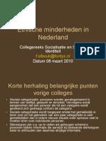 Etnische den in Nederland[1]