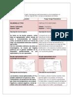 Aporte 2 - Microbiologia Ambiental (NXPowerLite)