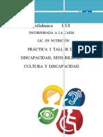 PRÁCTICA 1 SIGNOS Y SINTOMAS SOBRE DISCAPACIDADES