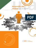 2010 Guia Para El Desarrollo Del Liderazgo Directivo en La Pyme