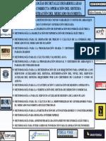 MetodologÃas Mercado Mayorista PanamÃ.pdf
