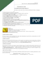 Programa del curso de Reiki-I en Cartagena