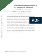Bushra Majid Paper