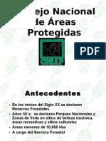 Consejo Nacional de Áreas Protegidas