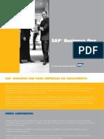 Folder Completo SAP Business One