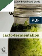 Lacto Fermentation eBook