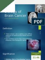 Brain Cancer (1)