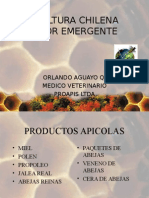 Apicultura Chilena Sector Emergente