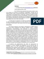 Evaluación Arqueológica de los Padrones 2278 y 1642. Chamangá.