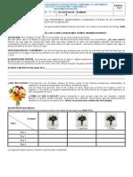 Ev. de Recuperación Inv. III P 4º y 5º