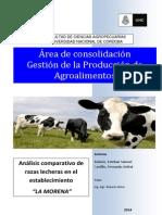 Bulacio - Castillo. Análisis comparativo de razas lecheras..pdf