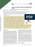 A Gro-TLE-NuRD Corepressor Complex Facilitates Tbx20-Dependent