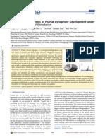 Comparative Proteomics of Peanut Gynophore Development Under