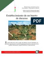 Establecimiento de un huerto de durazno.pdf