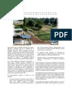 Fortalecimiento de la actividad de traspatio.pdf