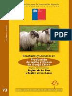 Produccion de Leche y Queso de oveja