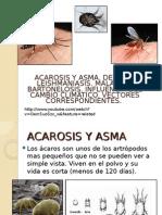 6.- Acarosis y Asma. Dengue. Leishmania. Bartonelosis