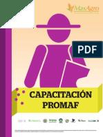 Plan de formación PROMAF1