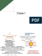 Clase i Carbohidratos
