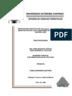 Hernandez Martinez Tomas 2006.pdf