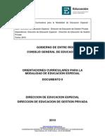 orientaciones-curriculares-para-la-modalidad-de-educacion-especial.pdf