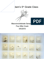 5th Grade Macroinvertebrate Samples 3-5-2010