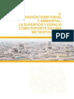 Diagnostico Lima