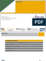 beasproductionsystemforsapb1-140510214647-phpapp01