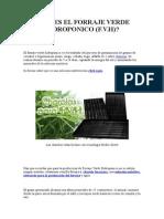 Qué Es El Forraje Verde Hidroponico
