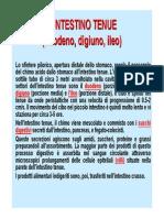 Microsoft PowerPoint - Funzioni e Processi3