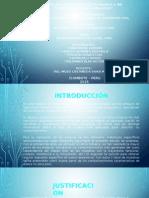 DIAPOSITIVAS DE TIPOS DE ENSAYOS