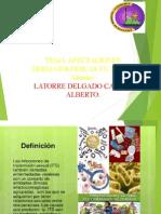 DERMATOLOGIA ETS.ppt
