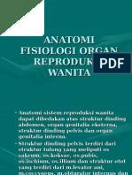 anatomi-reproduksi-wanita.ppt