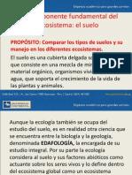 4TO TEMA.pdf