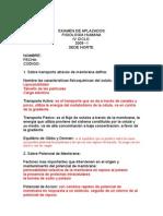 Examen_de_aplazados 2009 - i s.docxdxd