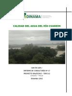 Calidad de Agua Del Rio Cuareim-dic 2012