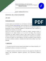 Teoria Sintactica Martinez Programa