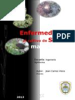 enfermedadesensandia1-131213131601-phpapp01