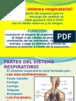 Diapositvasdelsistemarespiratorio Jlo 2010 121107190937 Phpapp02 (1)