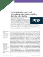 Transcriptional Regulation of Macrophage Polarization Enabling Diversity With Identity